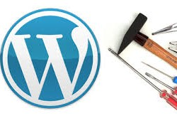 WordPress Site Taşıma