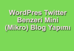 WordPress mikro blog yapımı