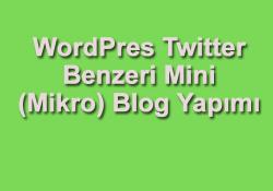 WordPress mikro blog yapımı