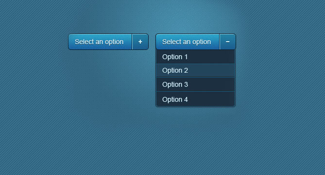 select option